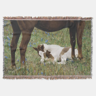 Close-up of Horse and Baby Colt Throw Blanket