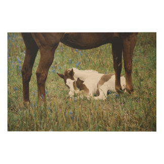Close-up of Horse and Baby Colt Wood Wall Decor