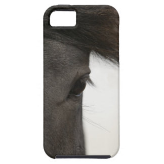 Close-up of  horse eye and hair iPhone 5 case