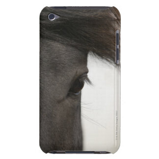 Close-up of  horse eye and hair iPod touch Case-Mate case