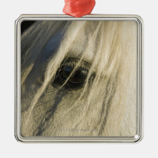 Close-up of Horse eye Christmas Ornament