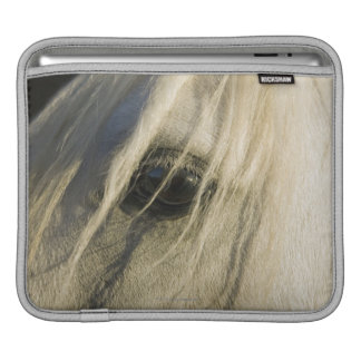 Close-up of Horse eye iPad Sleeve