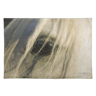 Close-up of Horse eye Placemat