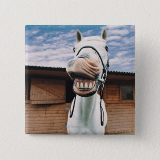 Close-up of Horse with Mouth Open 15 Cm Square Badge