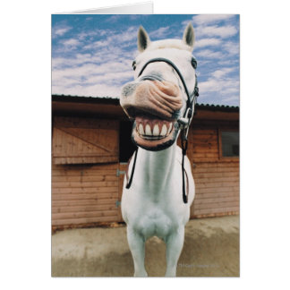 Close-up of Horse with Mouth Open Greeting Card