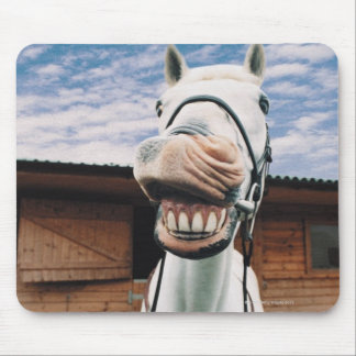 Close-up of Horse with Mouth Open Mouse Mat
