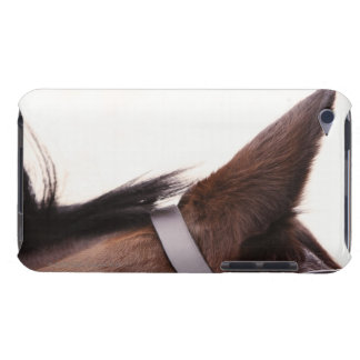 close-up of horses ear with bridal barely there iPod covers