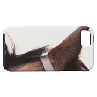 close-up of horses ear with bridal tough iPhone 5 case