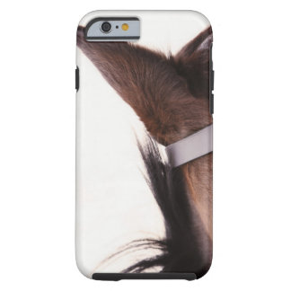 close-up of horses ear with bridal tough iPhone 6 case