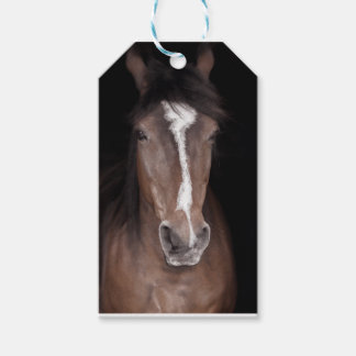 Close up of horses face gift tags