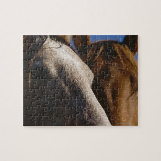 Close Up of Horses Jigsaw Puzzle