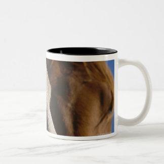 Close Up of Horses Two-Tone Coffee Mug
