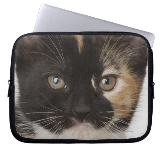 Close up of kitten laptop sleeve
