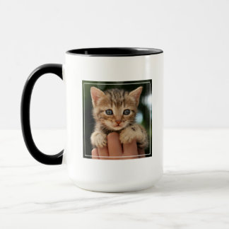 Close Up Of Kitten Mug