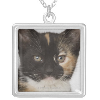 Close up of kitten silver plated necklace