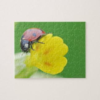 Close-Up of Ladybug Jigsaw Puzzle