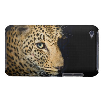 Close up of Leopard, Greater Kruger National Case-Mate iPod Touch Case