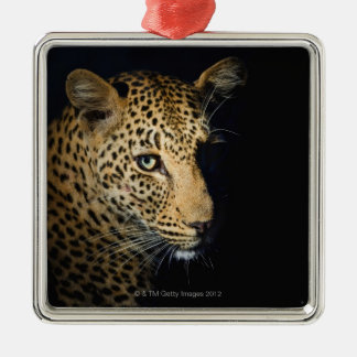 Close up of Leopard, Greater Kruger National Christmas Ornament