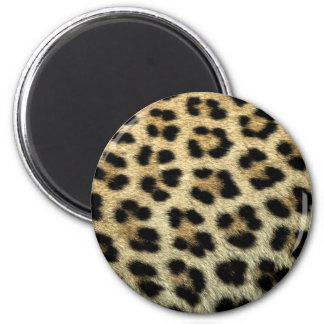 Close up of Leopard spots, Africa 6 Cm Round Magnet