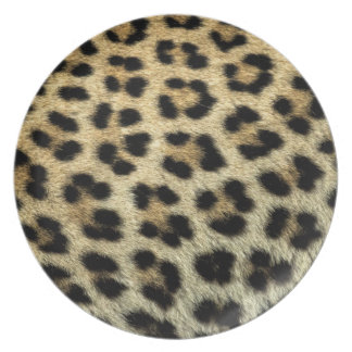 Close up of Leopard spots, Africa Plate