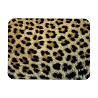 Close up of Leopard spots, Africa Rectangular Photo Magnet