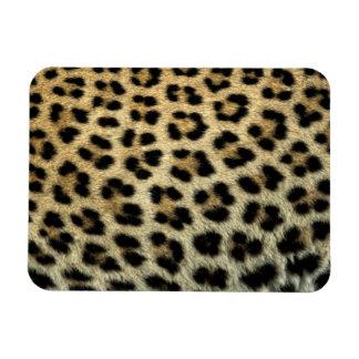 Close up of Leopard spots, Africa Rectangular Photo Magnet