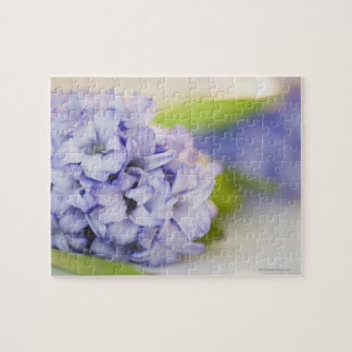 Close up of lilac flower puzzles