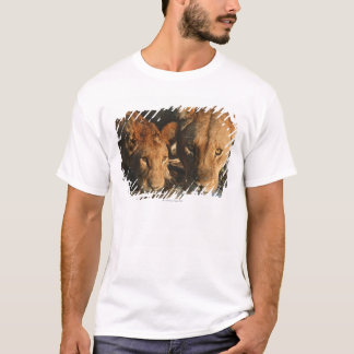 Close up of Lioness (Panthera leo) and cub T-Shirt