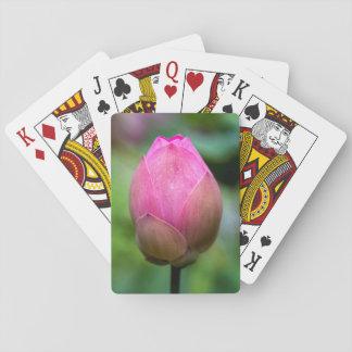 Close-up of lotus flower bud, Bali Playing Cards