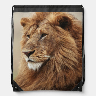 Close-up of male Lion Drawstring Bag