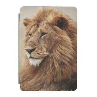 Close-up of male Lion iPad Mini Cover