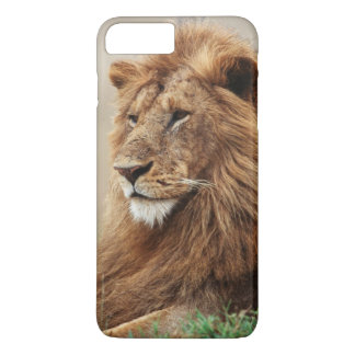 Close-up of male Lion iPhone 8 Plus/7 Plus Case