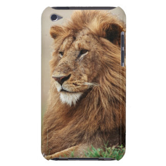 Close-up of male Lion iPod Touch Case-Mate Case