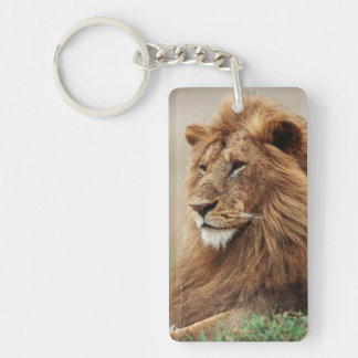 Close-up of male Lion Key Ring