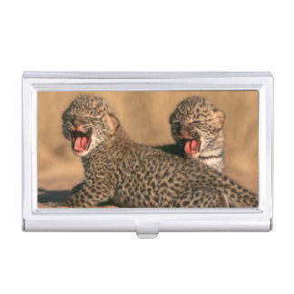 Close-Up Of New Born Leopard (Panthera Pardus) Business Card Holder