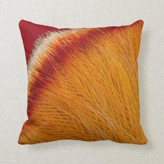 Close Up Of Orange Feather Cushion