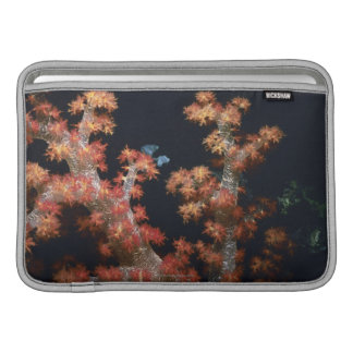 Close-up of Orange Soft Coral underwater, Palau Sleeve For MacBook Air