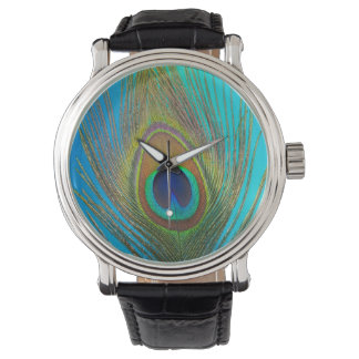 Close up of peacock feather watch