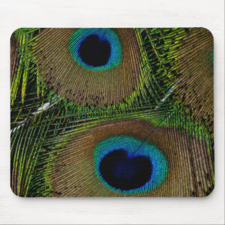 Close-up of peacock feathers mouse mat