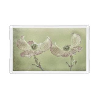Close-up of Pink Dogwood Blossoms | Seabeck, WA Acrylic Tray