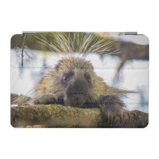 Close-up of porcupine in a tree iPad mini cover