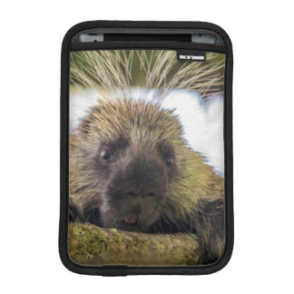 Close-up of porcupine in a tree iPad mini sleeve