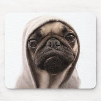 Close up of pug wearing hoodie. mouse pad