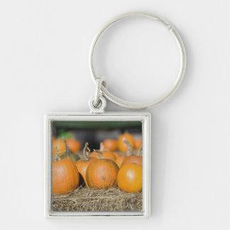 Close-up of pumpkins key ring