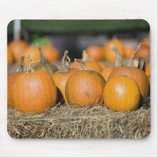 Close-up of pumpkins mouse mat