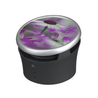Close-up of purple flower, Keukenhof Garden, Speaker