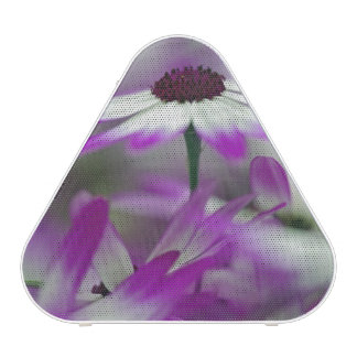 Close-up of purple flower, Keukenhof Garden, Bluetooth Speaker
