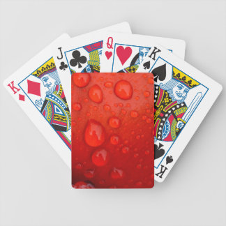 Close-up of raindrops on tulip petal bicycle playing cards