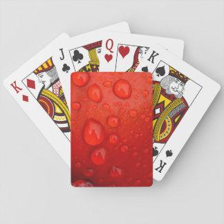 Close-up of raindrops on tulip petal poker deck