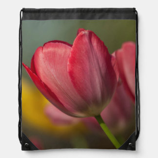 Close-up of red and yellow tulips in garden drawstring bag